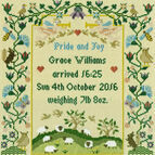 Pride And Joy Cross Stitch Kit