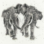 Age Is Irrelephant Cross Stitch Kit