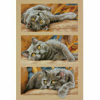 Max The Cat Cross Stitch Kit