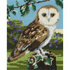 Owl Tapestry Kit for Beginners