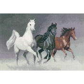Wild Horses Cross Stitch Kit