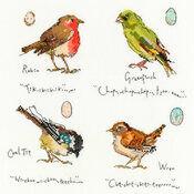Garden Birds 1 Cross Stitch Kit