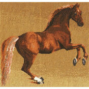 Stubbs - Whistlejacket Cross Stitch Kit