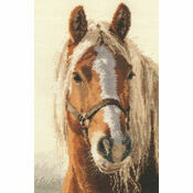 Adel Cross Stitch Kit