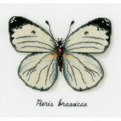 White Butterfly Cross Stitch Kit