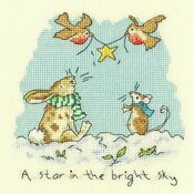 Star In The Bright Sky Cross Stitch Kit