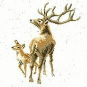 Wild At Heart Cross Stitch Kit