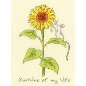 Sunshine Of My Life Cross Stitch Kit