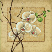 Oriental Orchids Cross Stitch Kit