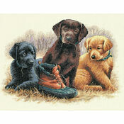 Chew Toy Cross Stitch Kit