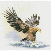Eagle in Flight Cross Stitch Kit