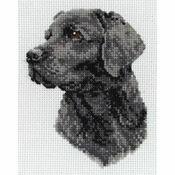 Black Labrador Cross Stitch Kit