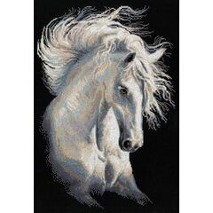 Andalusian Character Cross Stitch Kit
