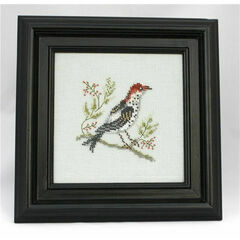 Golden Crowned Thrush Beadwork Embroidery Linen Kit