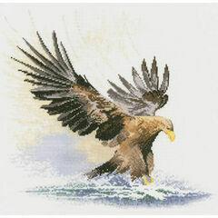 Eagle in Flight Cross Stitch Kit