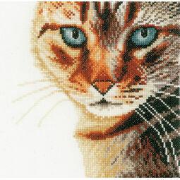 Cat Close-Up Cross Stitch Kit