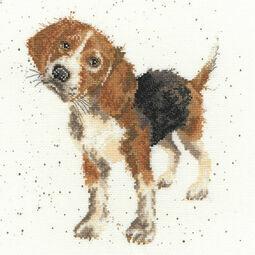 Hannah Dale Beagle Cross Stitch Kit