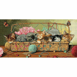 Kitty Litter Cross Stitch Kit