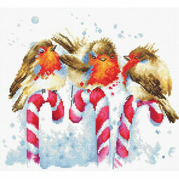 Christmas Birds Cross Stitch Kit