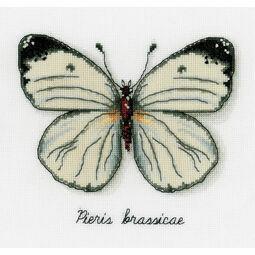 White Butterfly Cross Stitch Kit