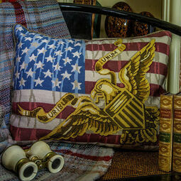 Stars & Stripes Cushion Panel Needlepoint Kit