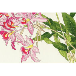 Orchid Blooms Cross Stitch Kit