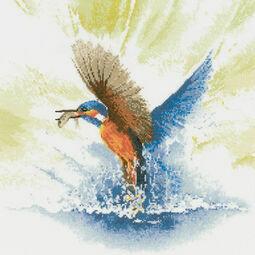 Kingfisher in Flight Cross Stitch Kit