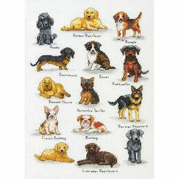 Dog Sampler Cross Stitch Kit