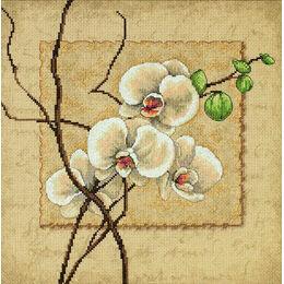 Oriental Orchids Cross Stitch Kit