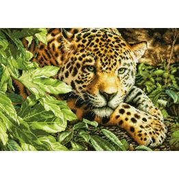 Leopard In Repose Cross Stitch Kit