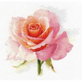 Rose Tenderness Cross Stitch Kit