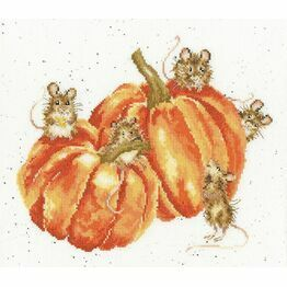 Pumpkin, Spice And Everything Mice Cross Stitch Kit