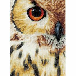 Owls Eye Cross Stitch Kit