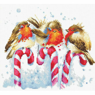 Christmas Birds Cross Stitch Kit