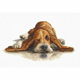 Basset Hound Cross Stitch Kit