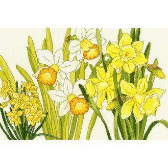 Daffodil Blooms Cross Stitch Kit