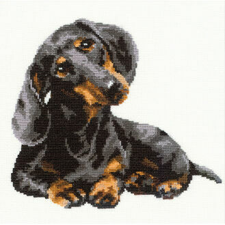 Dachshound Cross Stitch Kit