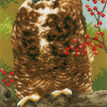 Owl In Autumn Cross Stitch Kit additional 1