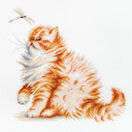 Kitten With A Dragonfly Cross Stitch Kit additional 1
