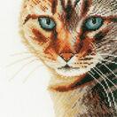 Cat Close-Up Cross Stitch Kit additional 1