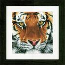 Tiger Cross Stitch Kit additional 2
