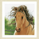 Mane In The Wind Cross Stitch Kit additional 2
