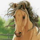 Mane In The Wind Cross Stitch Kit additional 1