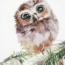 Wonderment Owl Cross Stitch Kit additional 1