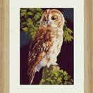 Owl On Fence Cross Stitch Kit additional 2