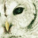 Snowy Owl Close-Up Cross Stitch Kit additional 1