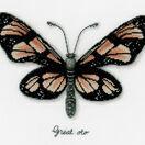 Orange Butterfly Study Cross Stitch Kit additional 1