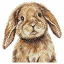 Bunny Cross Stitch Kit by Martha Bowyer additional 1