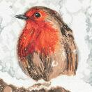 Robin Cross Stitch Kit by Martha Bowyer additional 1