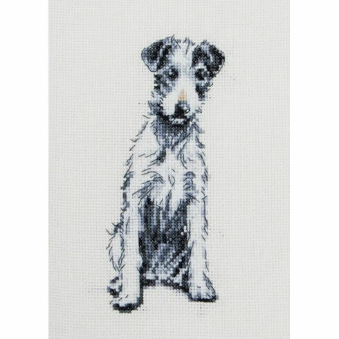 Barney The Dog Cross Stitch Kit